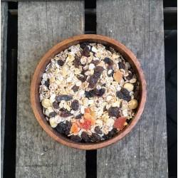 Mueslimix met papaja - Verse gezonde noten