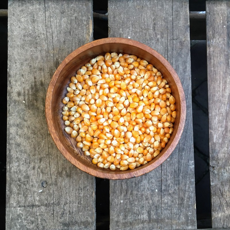 Popcorn mais Popcorn maïs Verse gezonde noten
