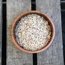 Zonnebloempitten - Verse gezonde noten
