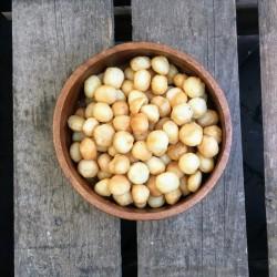 Gebrande macadamianoten gezouten - Verse gezonde noten