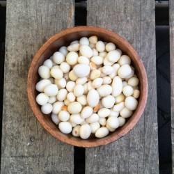 Knoflook Borrelnoten - Verse gezonde noten